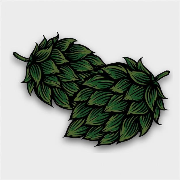 Ilustração de hop de cerveja em estilo de gravura Vetor Premium