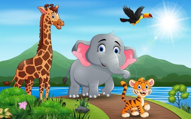 Ilustração de muitos animais andando na estrada Vetor Premium