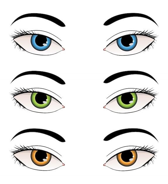 Ilustração de olhos femininos Vetor Premium