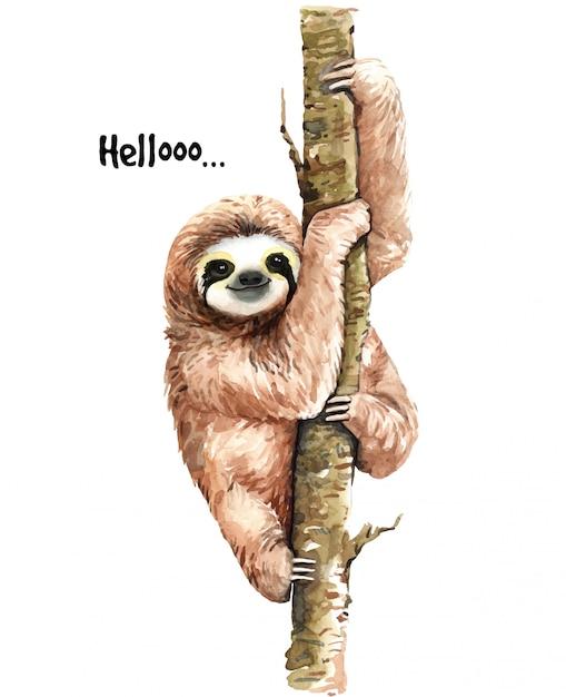 Ilustração de preguiça em aquarela. animal tropical. Vetor Premium