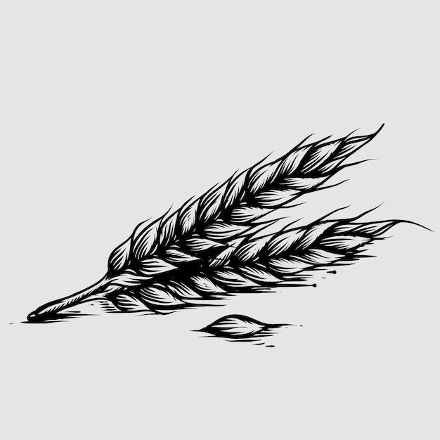 Ilustração, de, trigo, em, estilo gravado Vetor Premium