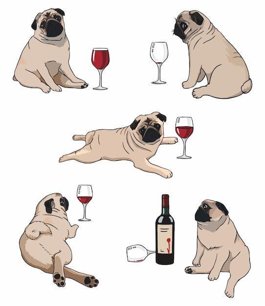 Ilustração de um conjunto de pugs em diferentes poses com vinho Vetor Premium