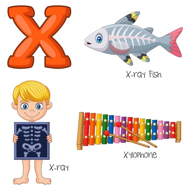 Ilustração, de, x, alfabeto Vetor Premium
