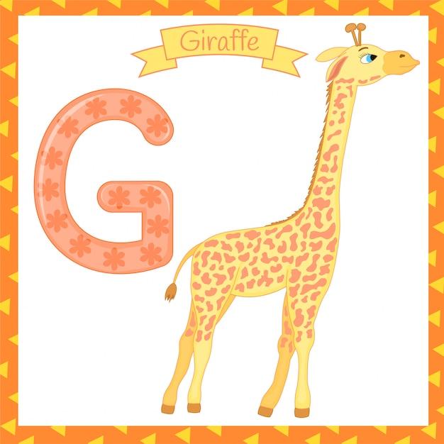 Ilustração do alfabeto animal isolado g para girafa Vetor Premium
