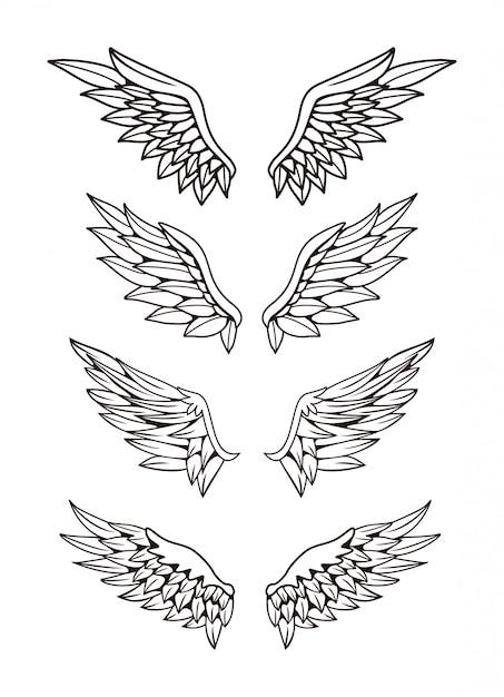 Ilustração do conjunto de coleta de asas Vetor Premium