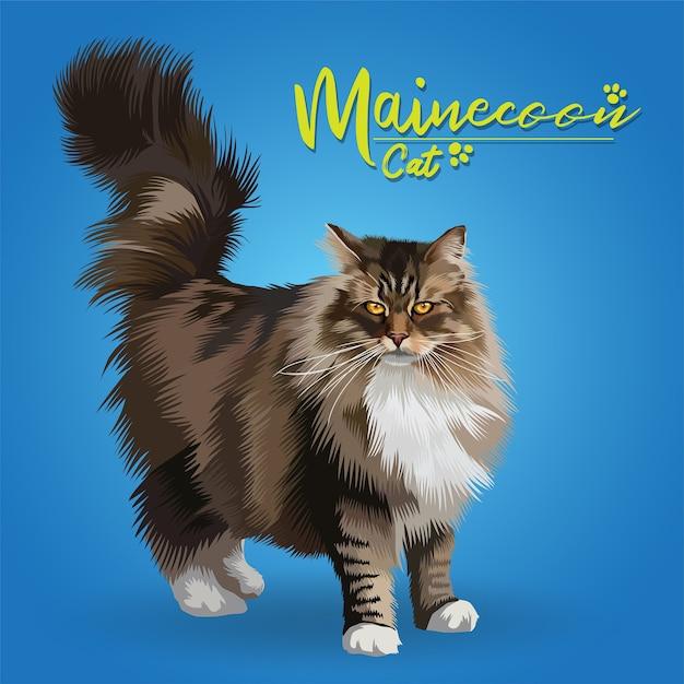 Ilustração do gato mainecoon. Vetor Premium