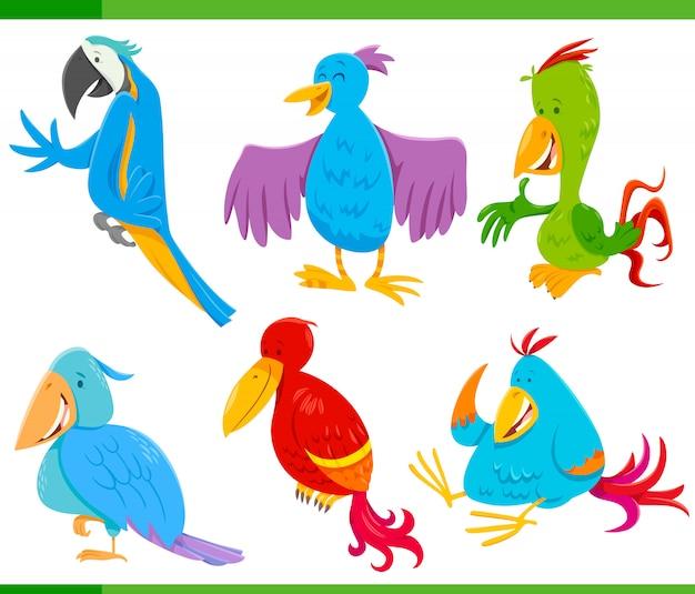 Ilustracao Dos Desenhos Animados De Passaros Coloridos Engracados