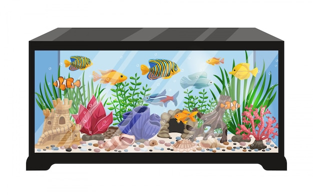 Ilustração dos desenhos animados do tanque de aquário Vetor grátis