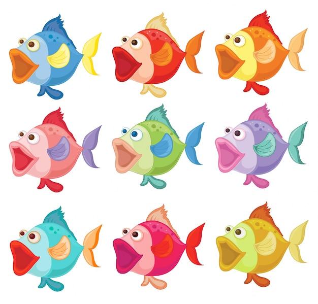 Ilustracao Dos Peixes Coloridos Em Um Fundo Branco Vetor Gratis