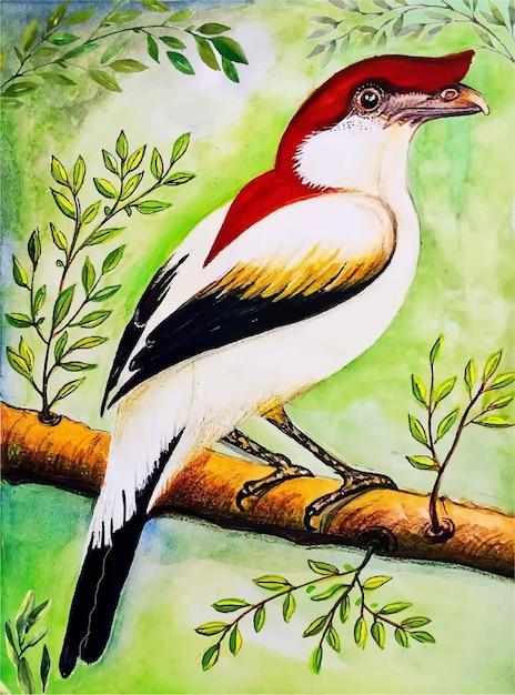 Ilustração em aquarela de pássaros pintados à mão Vetor Premium