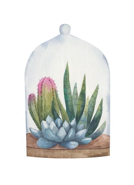 Ilustração em aquarela de plantas suculentas Vetor Premium