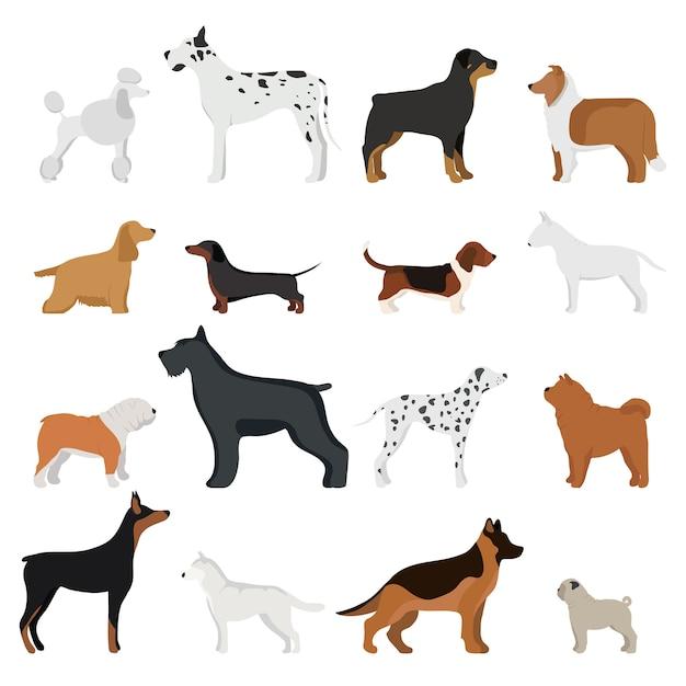 Ilustração em vetor cachorro raça Vetor Premium
