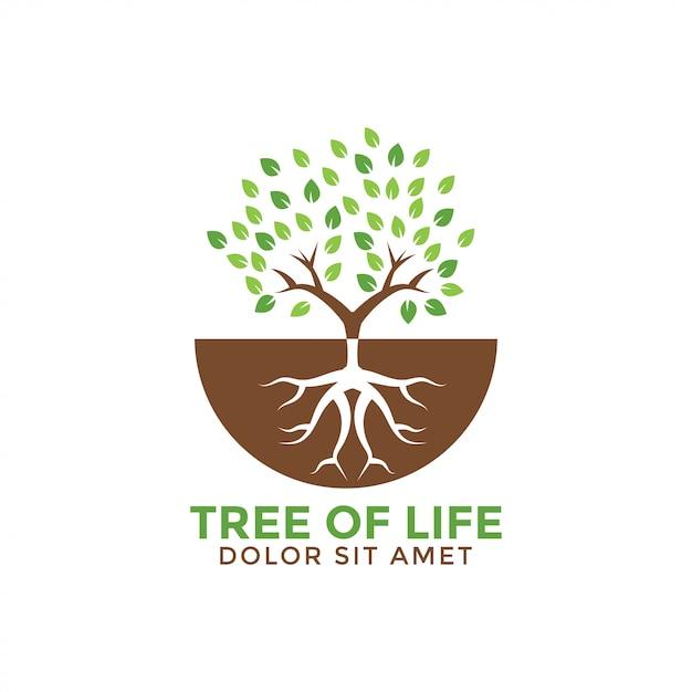 Ilustração em vetor modelo árvore de vida design gráfico Vetor Premium