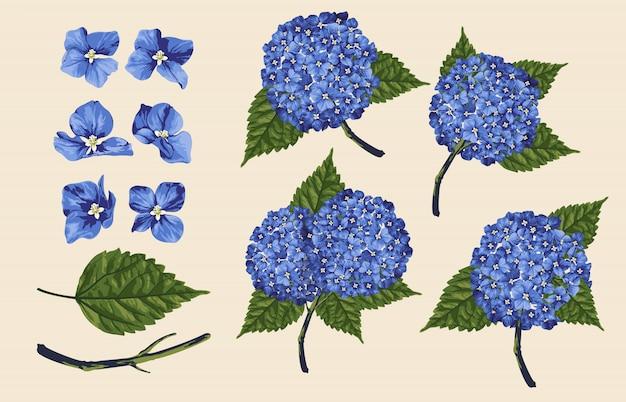 Ilustração inteiramente editable do vetor de grupos florais da arte de grampo. Vetor Premium