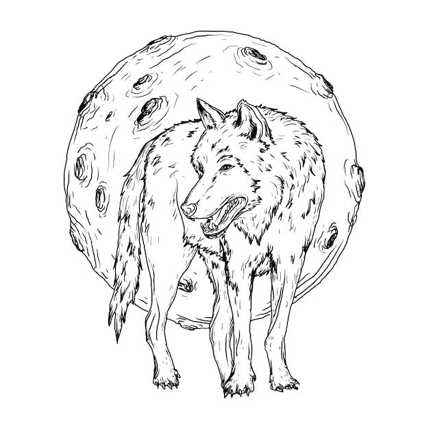 Ilustração preto e branco desenhada à mão lobo e lua Vetor Premium