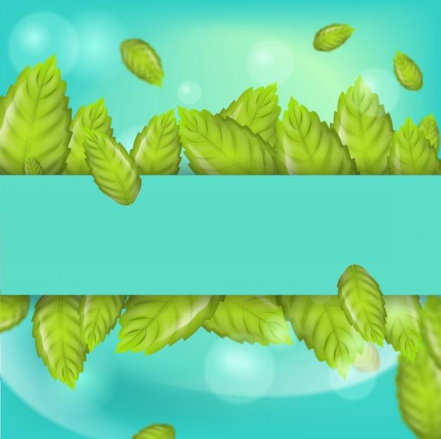 Ilustração realista horizontal hortelã folhas 3d Vetor Premium