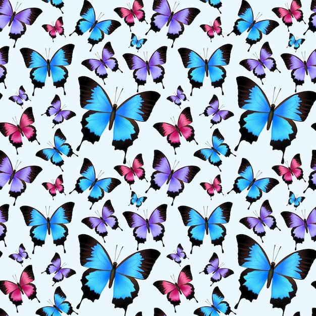 Ilustração sem emenda do vetor do teste padrão das borboletas coloridas na moda festivas decorativas. Vetor grátis