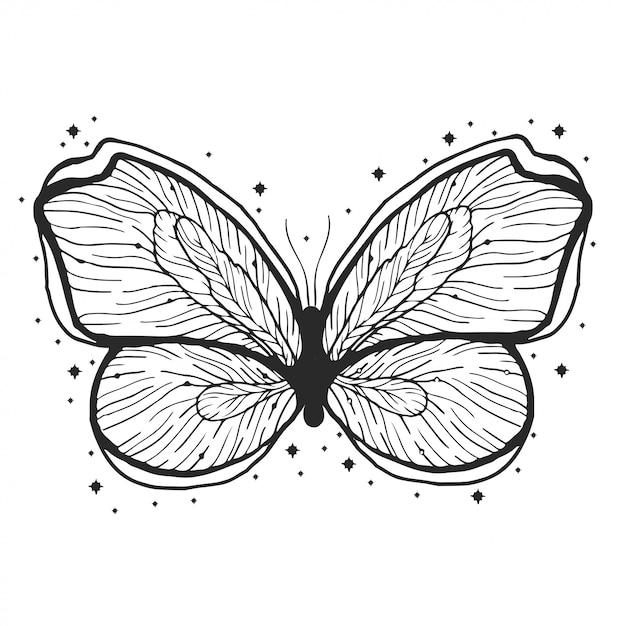Ilustração tirada mão da borboleta da beleza. Vetor Premium