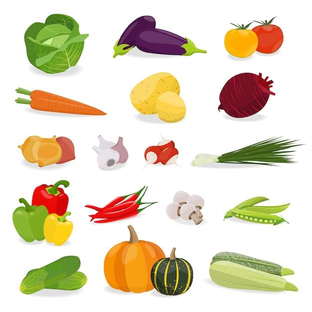 Ilustração vetorial com conjunto vegetal. comida saudável. Vetor Premium