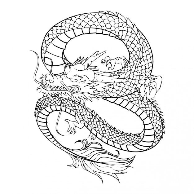 Ilustração vetorial de dragão no fundo branco Vetor Premium