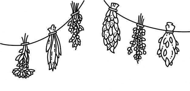 Ilustrações de estilo de vetor plana de ervas secas Vetor Premium