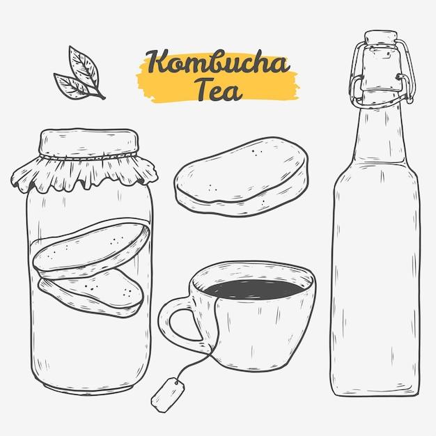 Ilustrações desenhadas à mão de chá de kombuchá Vetor grátis