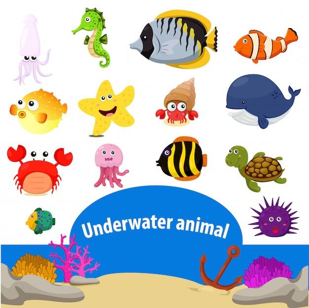 Ilustrador de animal subaquático Vetor Premium