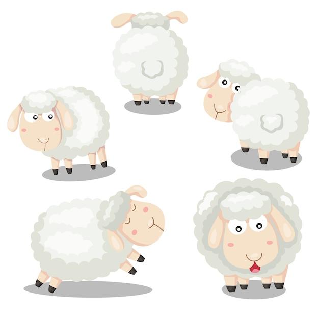 Ilustrador de desenhos animados engraçados de ovelhas Vetor Premium