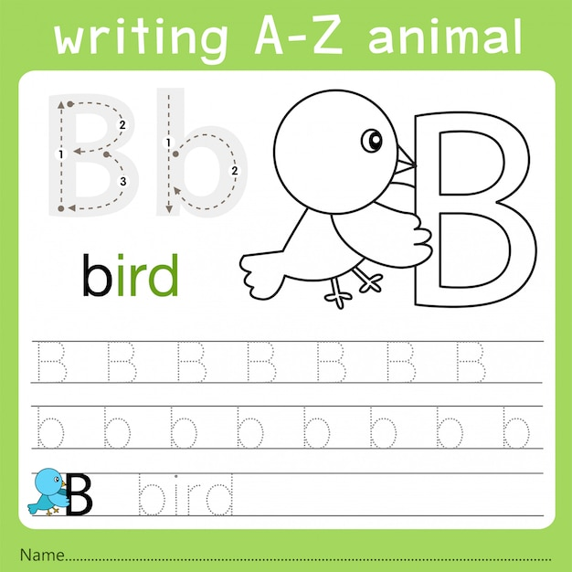 Ilustrador de escrever az animal b Vetor Premium