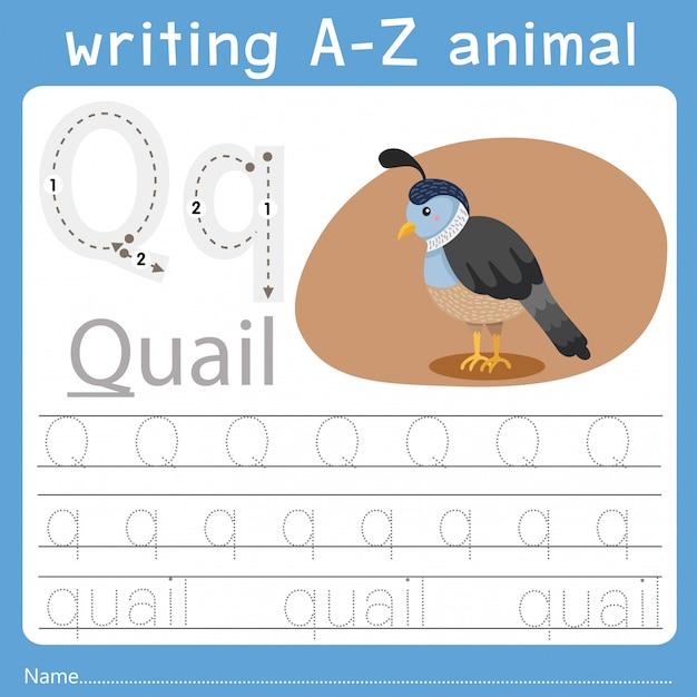 Ilustrador de escrever az animal q Vetor Premium