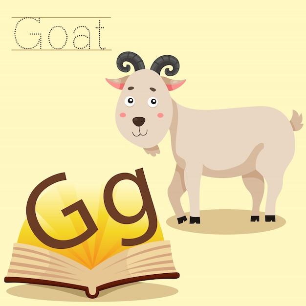 Ilustrador de g para vocabulário de cabra Vetor Premium