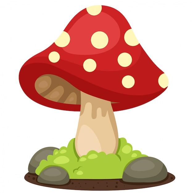 Ilustrador de paisagem de cogumelos Vetor Premium