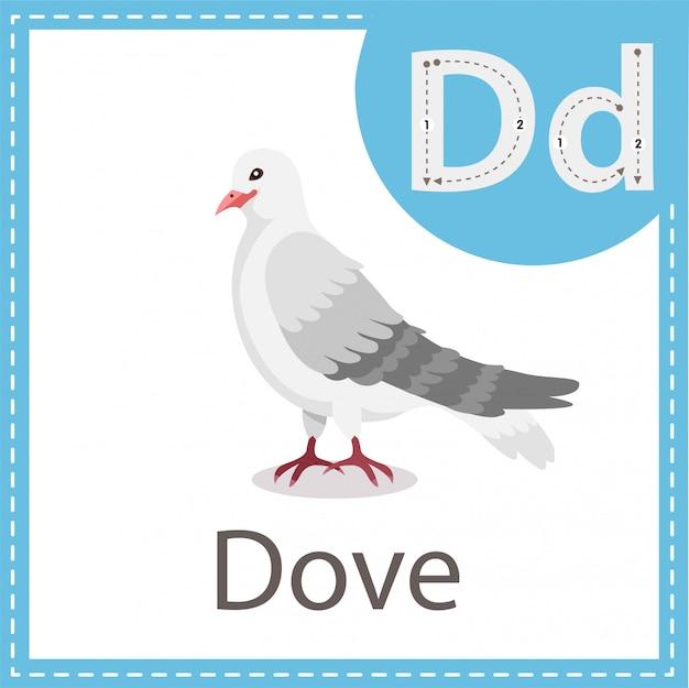 Ilustrador do pássaro dove Vetor Premium