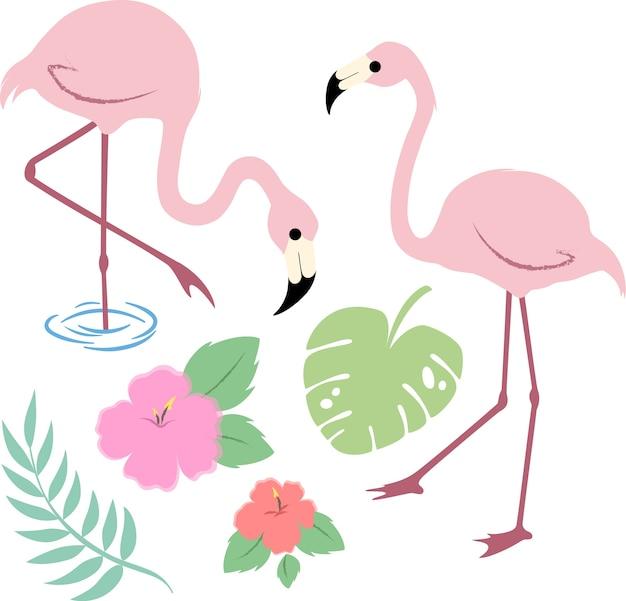 Imagem vetorial de flamingos tropicais Vetor Premium