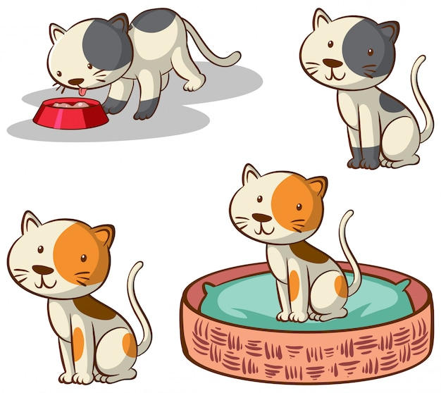 Imagens isoladas de gatos em poses diferentes Vetor grátis