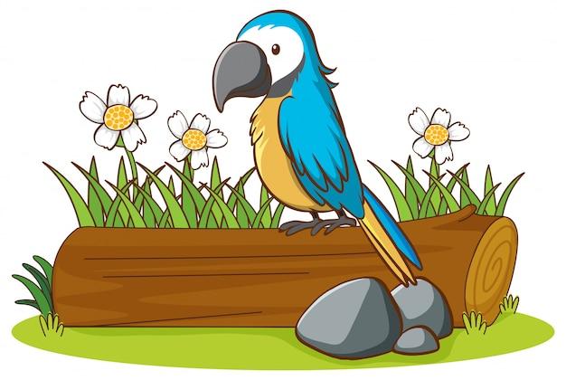Imagens isoladas de papagaio azul Vetor grátis