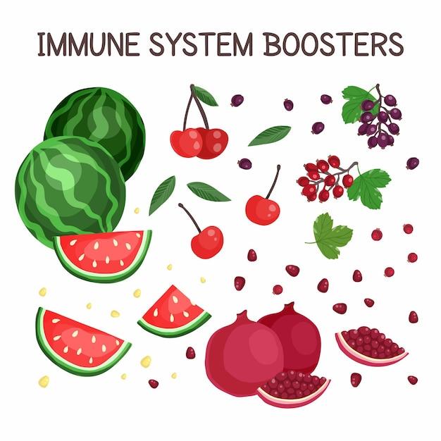 Impulsionadores do sistema imunológico Vetor grátis
