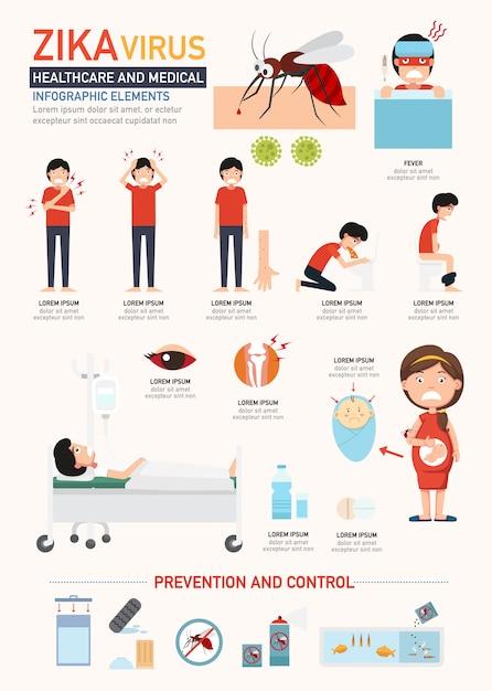 Infografia de vírus zika Vetor Premium