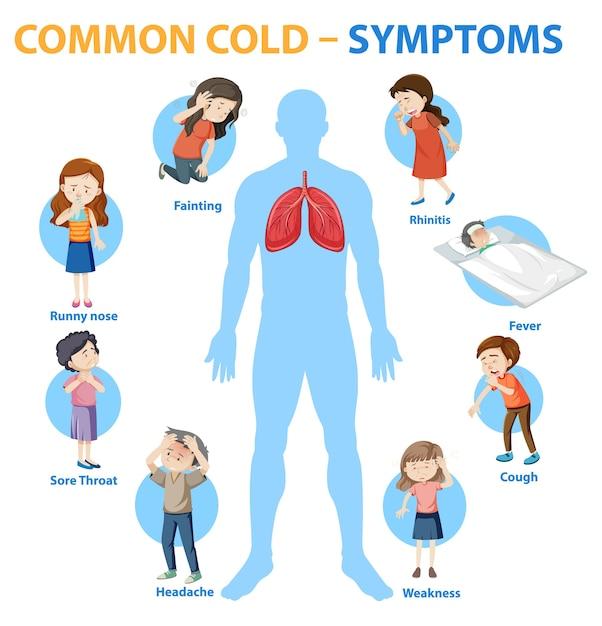 Infográfico de estilo de desenho animado de sintomas de resfriado comum Vetor grátis