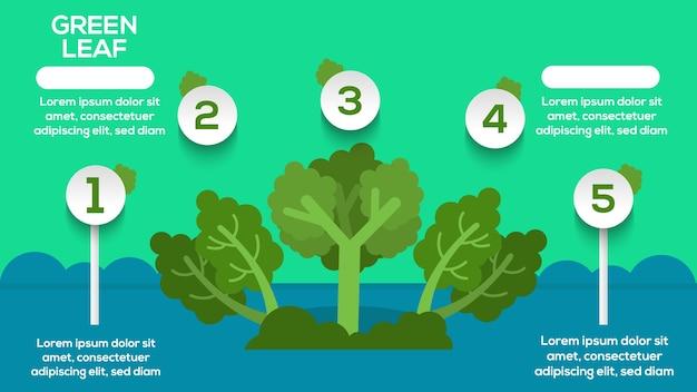 Infográfico de folha verde com passos, opções, estatísticas Vetor Premium