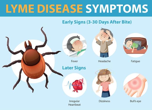 Infográfico de informações sobre os sintomas da doença de lyme Vetor grátis
