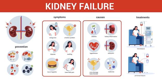 Infográfico de insuficiência renal. sintomas, causas, prevenção e tratamento. idéia de tratamento médico. urologia, órgão interno humano. corpo saudável. Vetor Premium