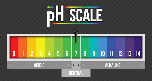 Infográfico de valor de escala ph, elemento de papel tornassol Vetor Premium