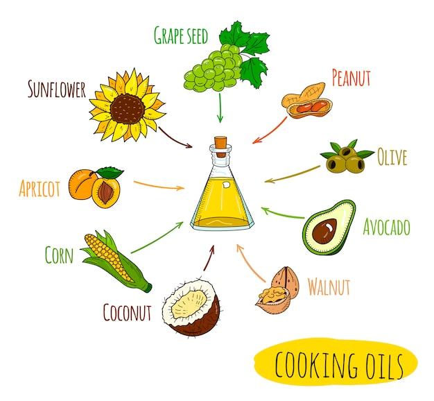 Infográfico desenhado de mão de tipos de óleo de cozinha Vetor Premium