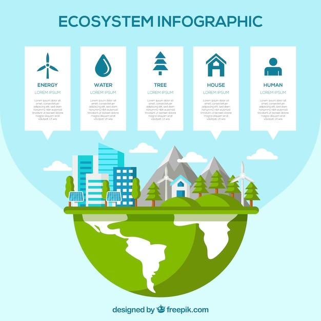 Infográfico moderno ecossistema com design plano Vetor grátis