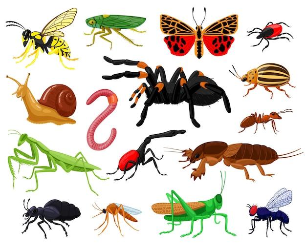 Insetos de desenhos animados. madeira e jardim bonitos insetos, borboleta, lagarta, aranha, joaninha e vespa. conjunto de mascotes de insetos de insetos. mosquito e borboleta, verme e libélula Vetor Premium