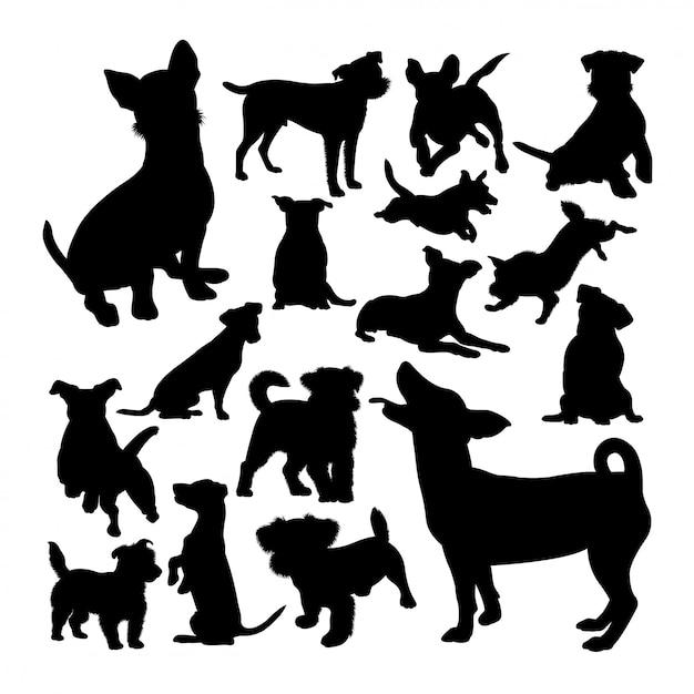 Jack russell cão silhuetas de animais Vetor Premium