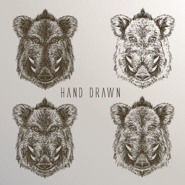 Javali, mão, mão, desenhado, cobrança Vetor grátis