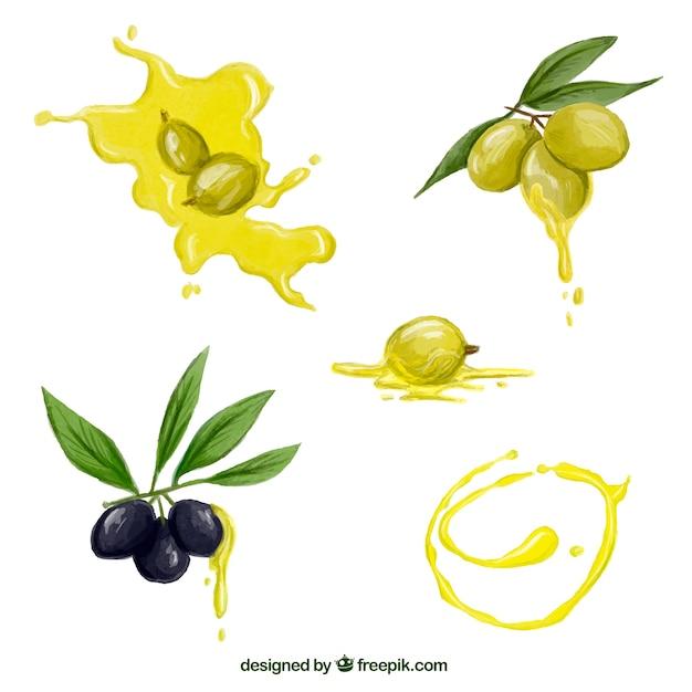 Jogo das azeitonas da aguarela e manchas de óleo Vetor grátis