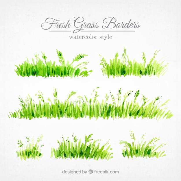 Jogo de beiras grama pintados com aguarela Vetor grátis